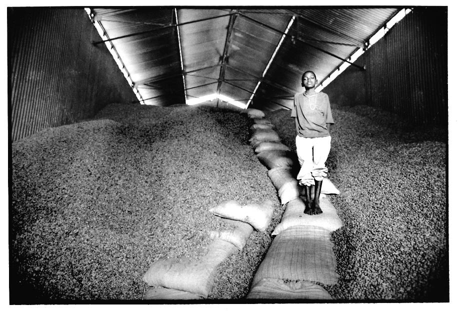 Hangar aux arachides, vues photographiques, photo argentique