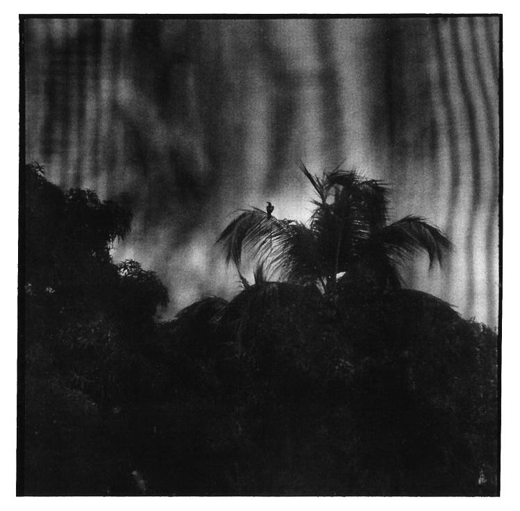 à travers les voiles, clichés noir et blanc argentique, Jean-Pierre Devals